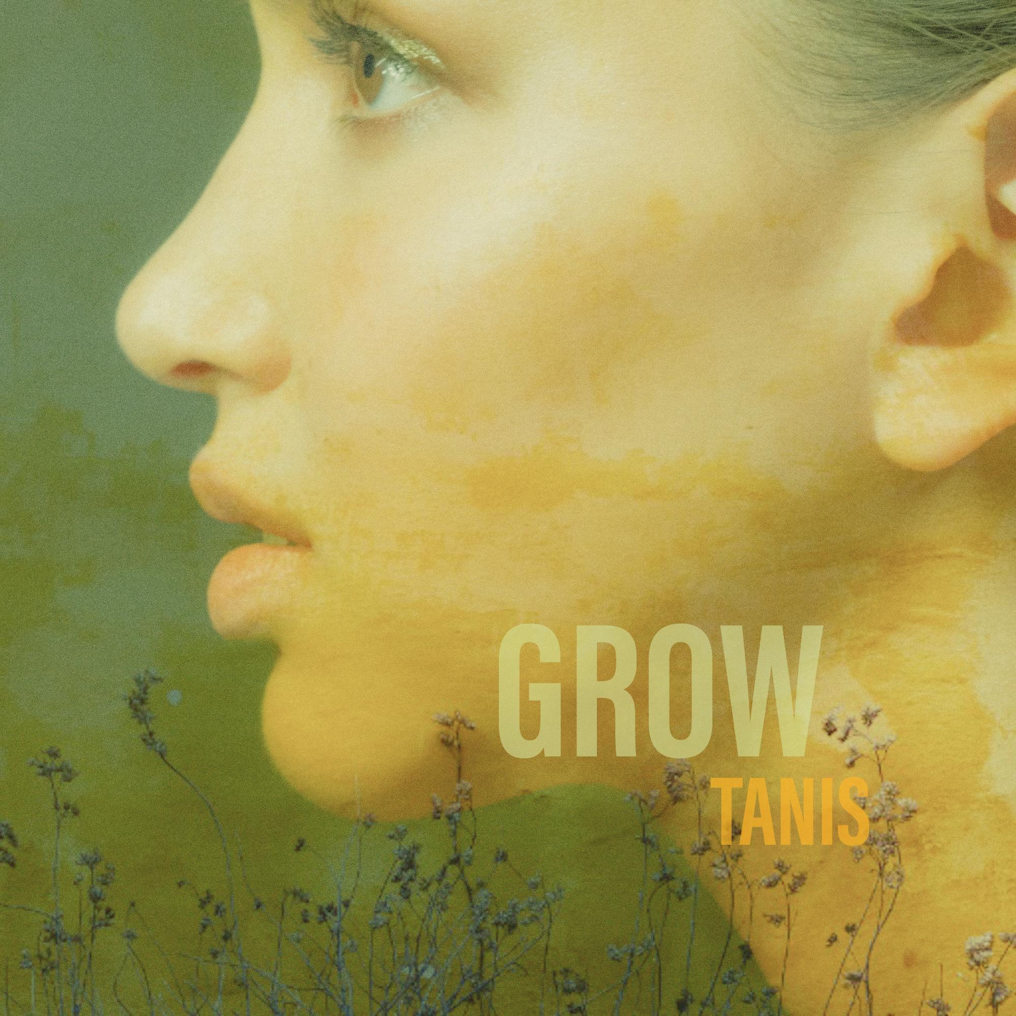 Tanis Blog Image